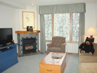 Hearthstone Lodge Village Ctr - HS311 - Sun Peaks vacation rentals