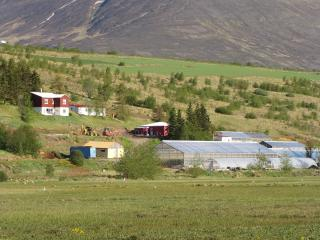 Brúnalaug Guesthouse - Akureyri vacation rentals