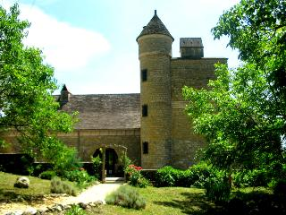 Spacious Villa with Internet Access and Tennis Court - Saint-Andre-d'Allas vacation rentals