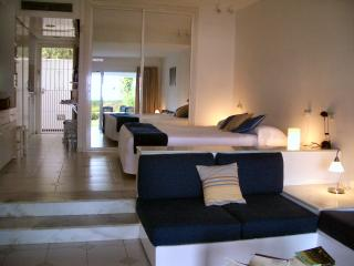 Spacious apartment and terrace - Cadiz Province vacation rentals