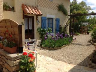 1 bedroom Gite with Internet Access in Lezay - Lezay vacation rentals