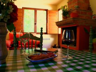 Nice House with Internet Access and Satellite Or Cable TV - Niguelas vacation rentals