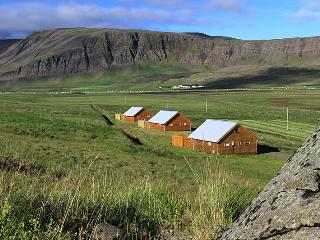 Nice House with Television and Microwave - Reykholar vacation rentals
