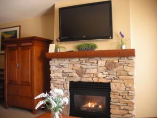 2BR Ski in/Out Slope & Village Views in Powderhorn - Solitude vacation rentals