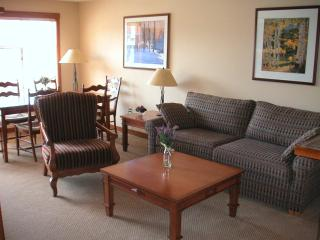 1BR Ski in/Out Slope & Village Views in Powderhorn - Solitude vacation rentals