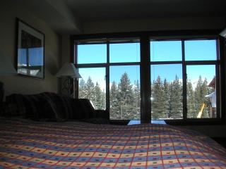 Studio Ski in/Out Slope & Village Views Powderhorn - Solitude vacation rentals
