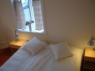Ranargata Double Studio 302 - Reykjavik vacation rentals