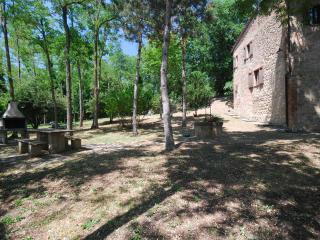 Villa Santa Maria in Montepulciano - Montepulciano vacation rentals