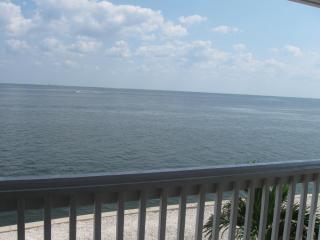 Waterside At Coquina Key Fl- Overlooking Tampa Bay - Saint Petersburg vacation rentals