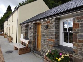 Dinas Cottage - Ponterwyd vacation rentals