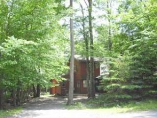 front of house - Nice Chalet in Poconos Vacation home - Tobyhanna - rentals