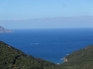Corsican villa sea view - Porto vacation rentals
