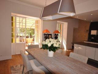 Amazing Apartment 3 Bedrooms with Terrace - Aix-en-Provence vacation rentals