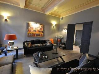 Luxury 3 Bedroom with WiFi in Center Town Aix en P - Aix-en-Provence vacation rentals