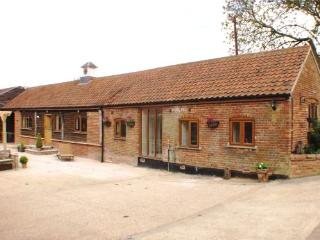 Perfect Barn with Internet Access and Outdoor Dining Area - Dereham vacation rentals