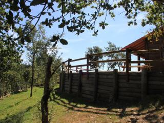 Beautiful Chalet with A/C and Television - Sever do Vouga vacation rentals