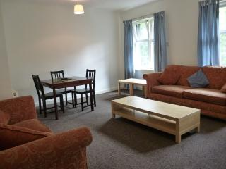 Large 2 Bed Flat in Glasgow for Commonwealth Games - Glasgow vacation rentals