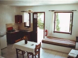 Ibiscus Studios type 1 - Kalymnos vacation rentals