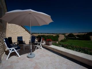 Le Cheval Blanc ****, comfort 6pers countryhouse - Vicheres vacation rentals