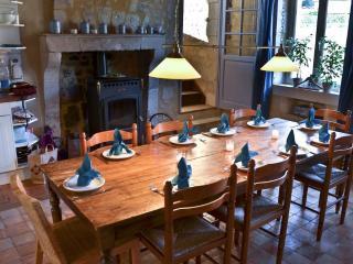 Le Cheval Blanc**** een zeer comfortabel landhuis - Vicheres vacation rentals