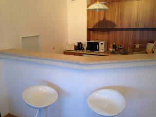 Comfortable 1 bedroom Samokov Apartment with Internet Access - Samokov vacation rentals