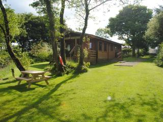 Beautiful 2 bedroom Lodge in Cardigan with Internet Access - Cardigan vacation rentals