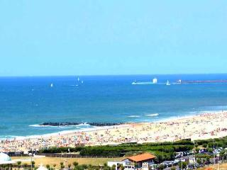 Panoramique mer /Plage&commer à pied /Parking/Pisc - Anglet vacation rentals