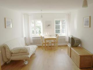 Nice Condo with Internet Access and Microwave - Lindau vacation rentals