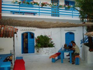 Apartment large rustic Petrcane Dalmatia - Petrcane vacation rentals