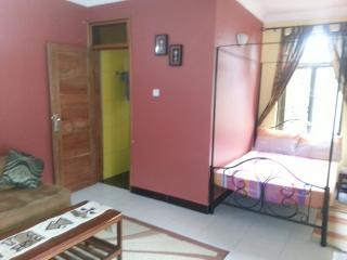 One Bedroom studio fully furnished apartment - Dar es Salaam vacation rentals
