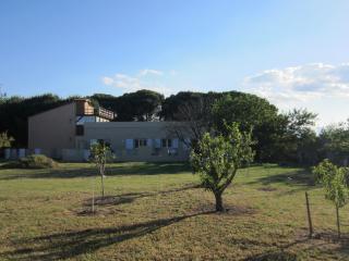 T1 bis sur propriété de 8000m2 à St Cyprien - Saint-Cyprien vacation rentals