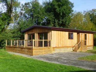 Bright Lodge with Deck and Internet Access - Clun vacation rentals