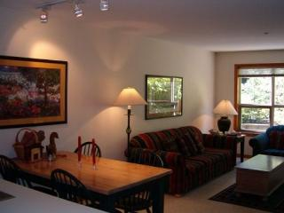 The Aspens 121 - Great ski in ski out location with free wi fi - Whistler vacation rentals
