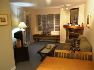 Marketplace Lodge 226 - Central location on the Olympic Plaza - Whistler vacation rentals