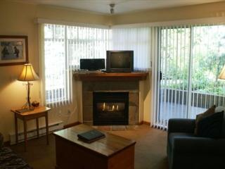 Stoney Creek Lagoons 5 - Conveniently located, free parking & wifi - Whistler vacation rentals