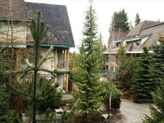 Stoney Creek Northstar 106 - 2 bedroom condo, free parking, close to village - Whistler vacation rentals