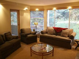 Woodrun 318 - Ski in Ski out, Deluxe 2 bedroom condo - Whistler vacation rentals