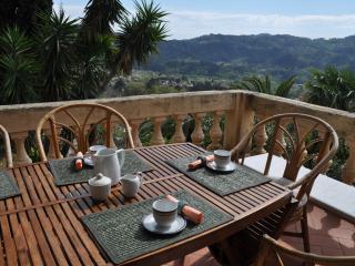 Cozy 3 bedroom Camaiore Condo with Internet Access - Camaiore vacation rentals
