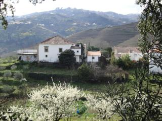 Nice House with A/C and Balcony - Vila Real vacation rentals
