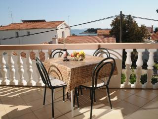 Apartmani Ljubica (apartment for four) - Pakostane vacation rentals