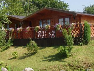 Comfortable 1 bedroom Cabin in Llantrisant with Television - Llantrisant vacation rentals