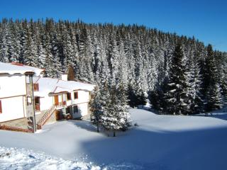 Convenient Ski chalet with Television and Microwave - Pamporovo vacation rentals