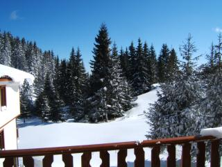 Beautiful Pamporovo Ski chalet rental with Toaster - Pamporovo vacation rentals
