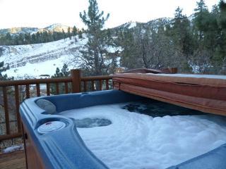 #004 Bearadise - Big Bear Lake vacation rentals