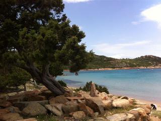 Solemare case vacanze  villetta n°1 - San Teodoro vacation rentals