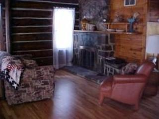 Beautiful Cabin in Hill City with Dishwasher, sleeps 9 - Hill City vacation rentals