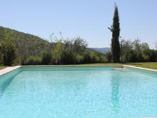 Comfortable Villa with Internet Access and Television - Gaiole in Chianti vacation rentals