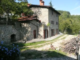 Charming Tuscan holiday farmhouse in the Castel San Niccolo commune, sleeps up to 8 and features private pool and jacuzzi - Castel San Niccolo vacation rentals