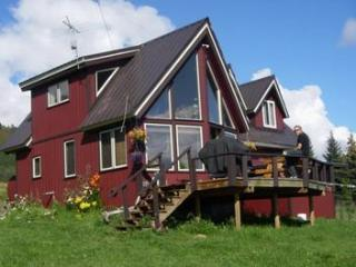 Lovely 2 bedroom House in Homer - Homer vacation rentals