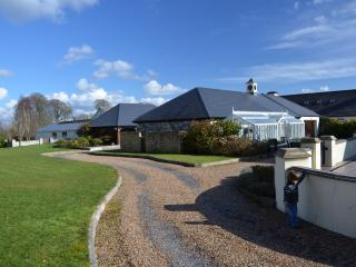 Perfect House with Internet Access and Dishwasher - Banagher vacation rentals